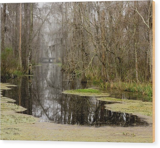 Light Fog On The Swamp Wood Print