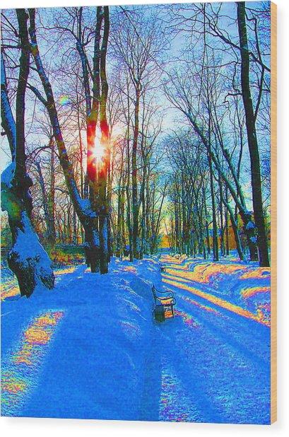 Light In Garden Wood Print
