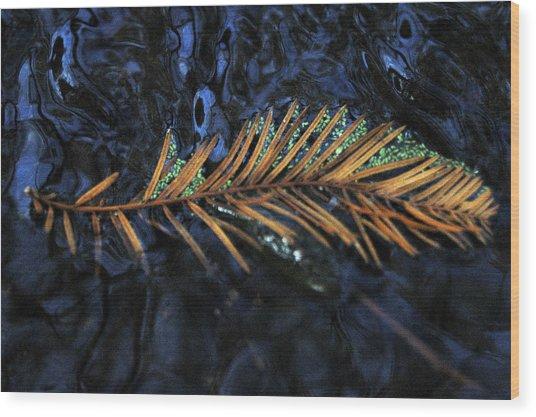Light Music  Wood Print by Deborah Gallaway