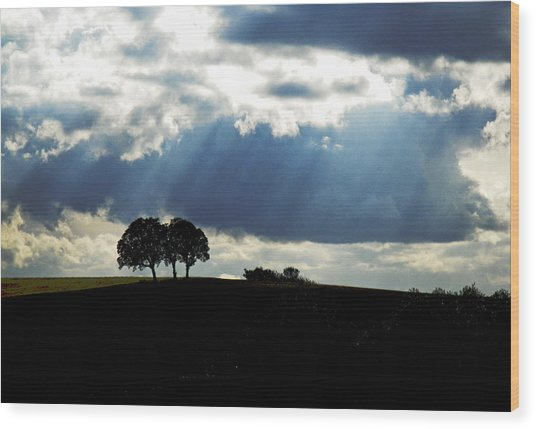 Light Rays Wood Print by Margaret Hood