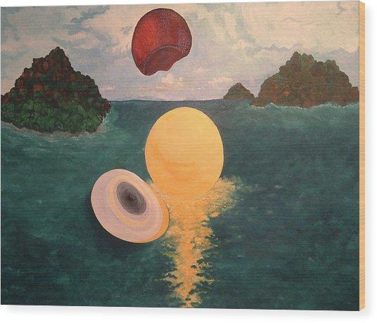 Light Revealed  Wood Print by Nancy Brockett