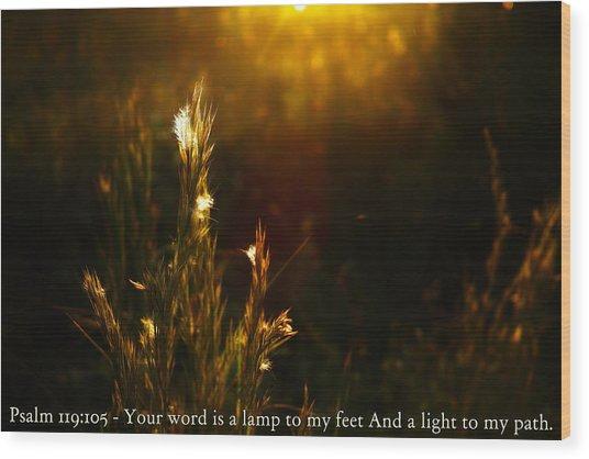 Light To My Path Wood Print by Roberto Aloi