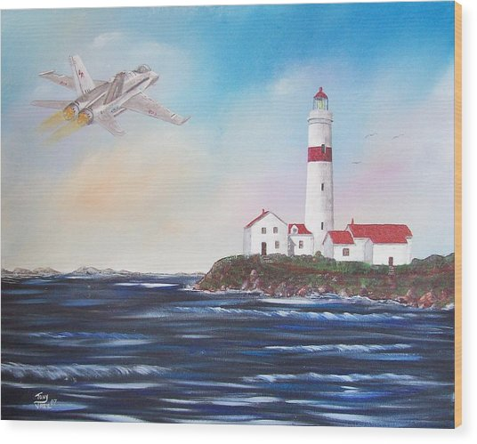 Lighthouse Fly By Wood Print