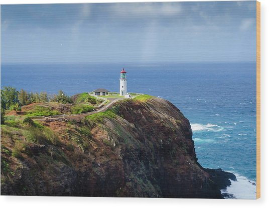 Lighthouse On A Cliff Wood Print