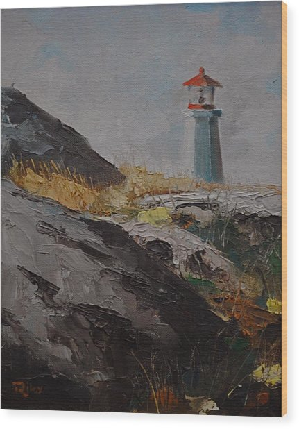 Lighthouse Peggys Cove Ns Wood Print by Chris  Riley
