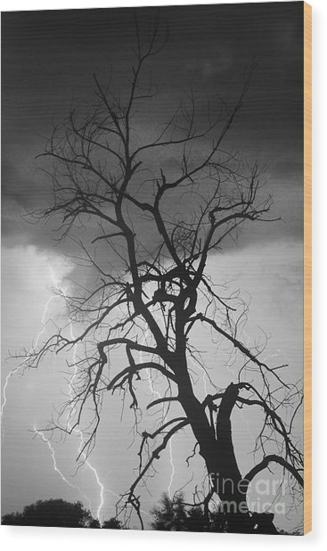 Lightning Tree Silhouette Portrait Bw Wood Print