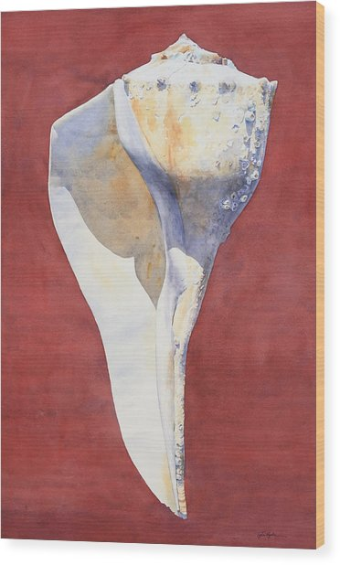 Lightning Whelk Conch I Wood Print