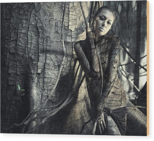 Lignum Wood Print