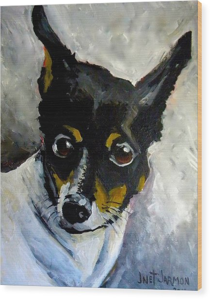 Lil Rat Terrier Wood Print