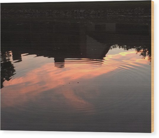 Li'l Ripples In A Florida Lake Wood Print