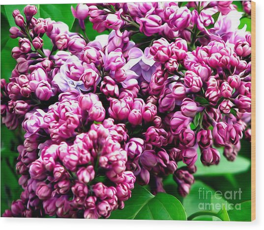Wood Print featuring the photograph Lilac Blossoms Abstract Soft Effect 1 by Rose Santuci-Sofranko