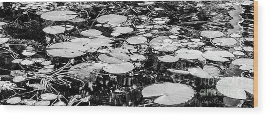 Lily Pads, Black And White Wood Print