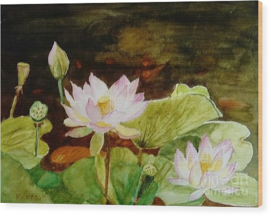The Lily Pond - Painting  Wood Print