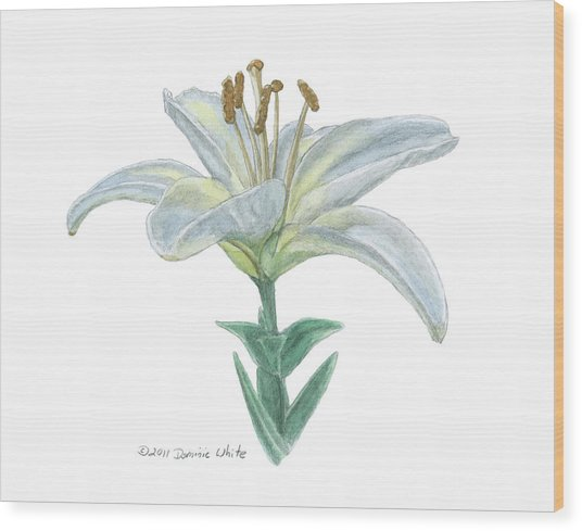 Lily Watercolor Wood Print