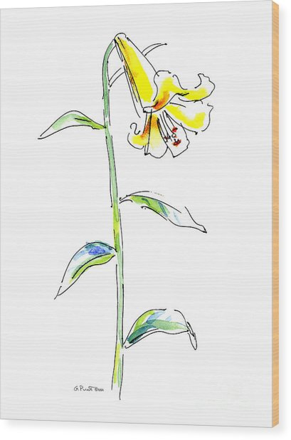 Lily Watercolor Painting 2 Wood Print
