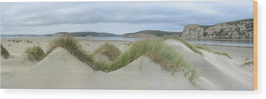 Limantour Spit On A Grey Day Wood Print by Bob Bennett