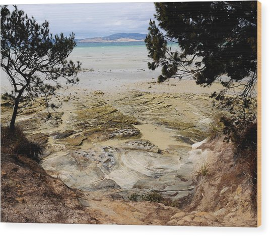 Lime Bay Tasmania 5 Wood Print