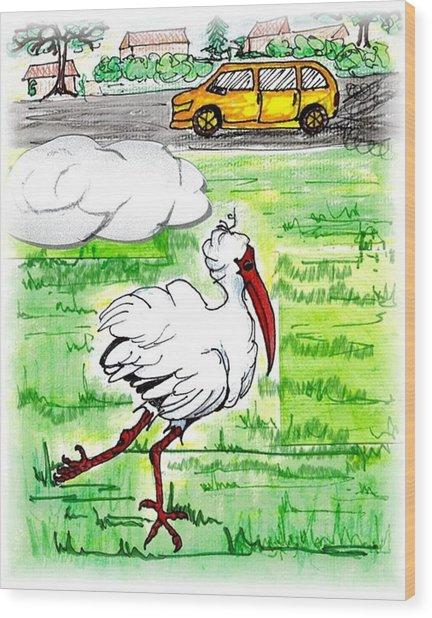 Limping Ibis Wood Print by Carol Allen Anfinsen