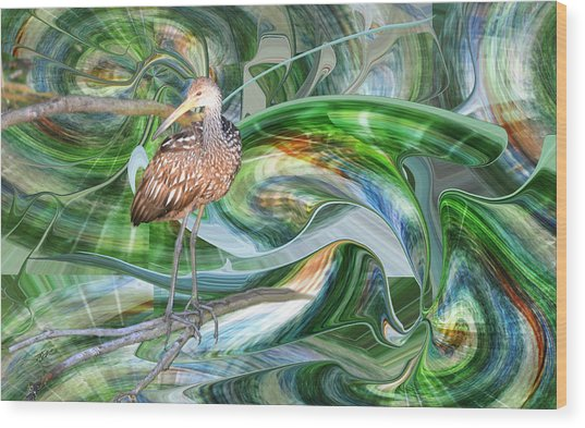 Limpkin Studying Time Flow Wood Print