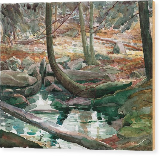 Lingle Stream Wood Print by Jeff Mathison