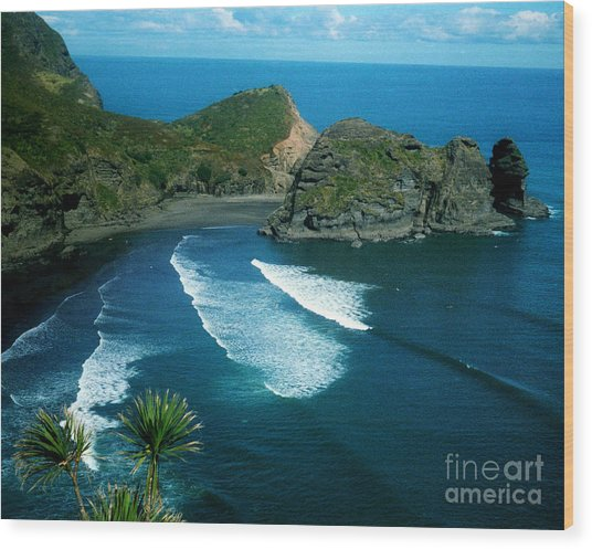 Lion Beach Piha New Zealand Wood Print