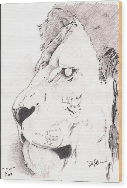 Lion Wood Print by Darryl Barnes