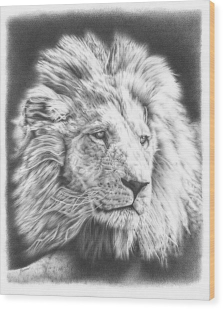 Fluffy Lion Wood Print