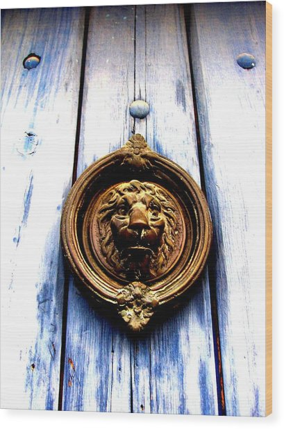Wood Print featuring the photograph Lion Dreams by Michelle Dallocchio