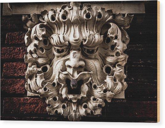 Lion Head Wood Print