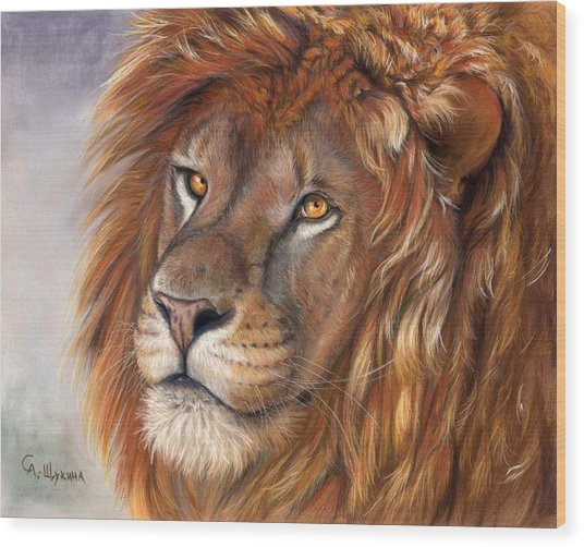 Lion Portrait Wood Print by Svetlana Ledneva-Schukina