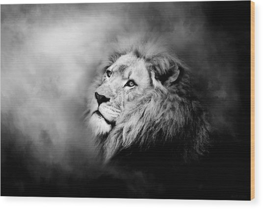 Lion - Pride Of Africa II - Tribute To Cecil In Black And White Wood Print