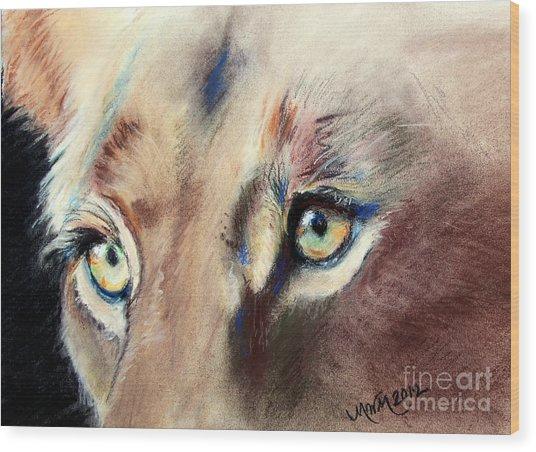 Lioness Eyes Wood Print