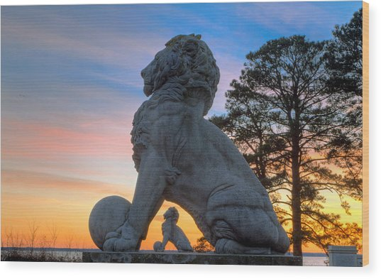 Lions Bridge At Sunset Wood Print