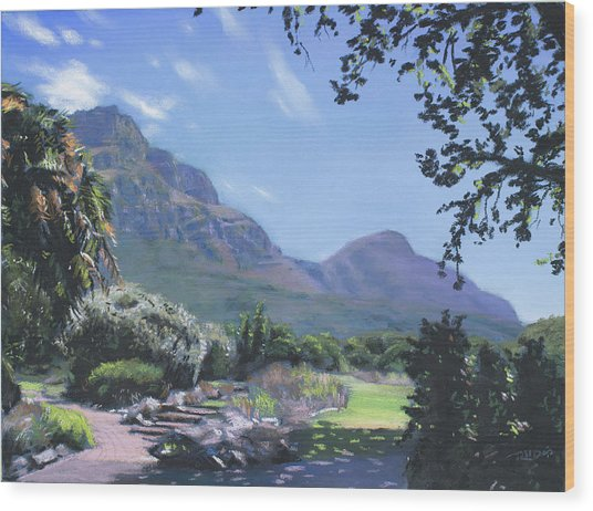 Kirstenbosch View Wood Print