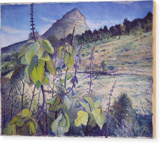 Lions Head From Signal Hill Cape Town  South Africa 2006  Wood Print by Enver Larney
