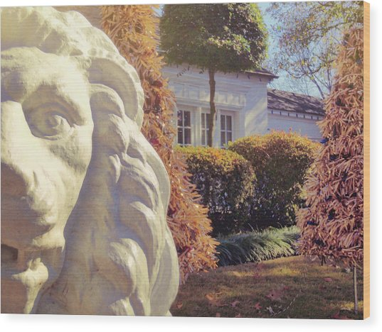 Lions View Of Graceland Wood Print by JAMART Photography