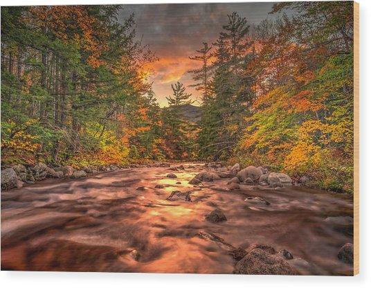 Liquid Gold Of New Hampshire Wood Print