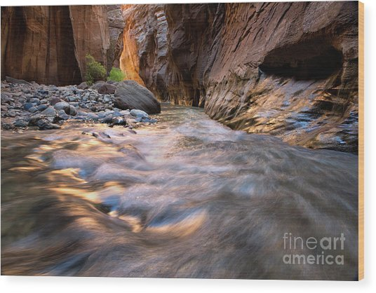Liquid Gold Utah Adventure Landscape Photography By Kaylyn Franks Wood Print