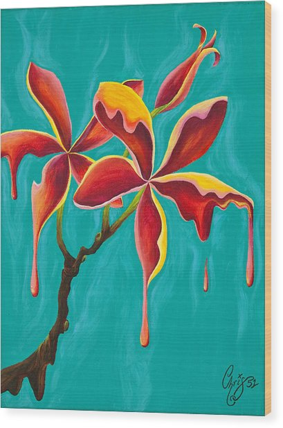 Liquidia Plumeria Wood Print by Chris  Fifty-one