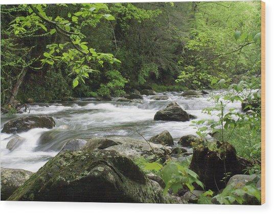 Litltle River 1 Wood Print