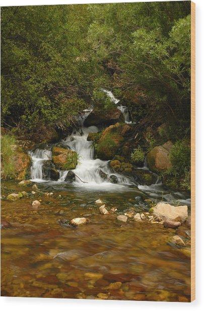 Little Big Creek Wood Print