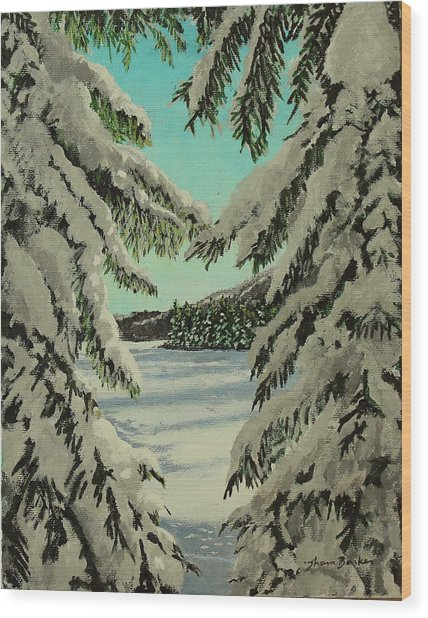 Little Brook Cove Wood Print