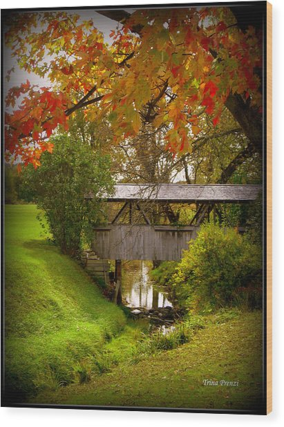 Little Covered Bridge Wood Print by Trina Prenzi