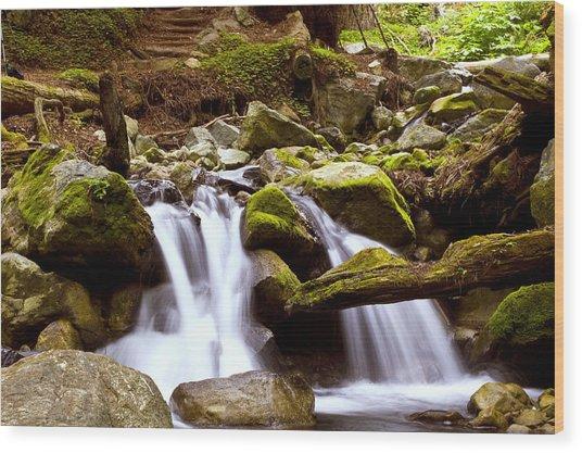 Little Creek Falls Wood Print