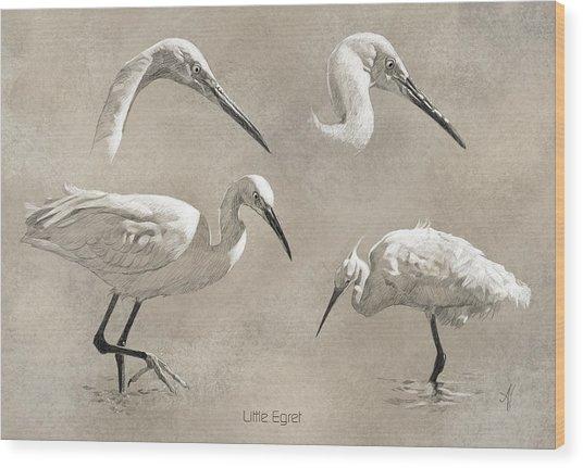 Little Egret Wood Print