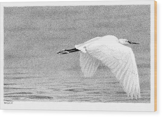 Little Egret Wood Print