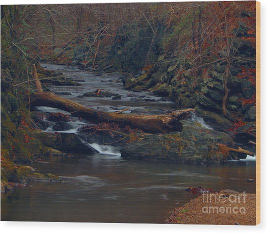 Little Falls Wood Print