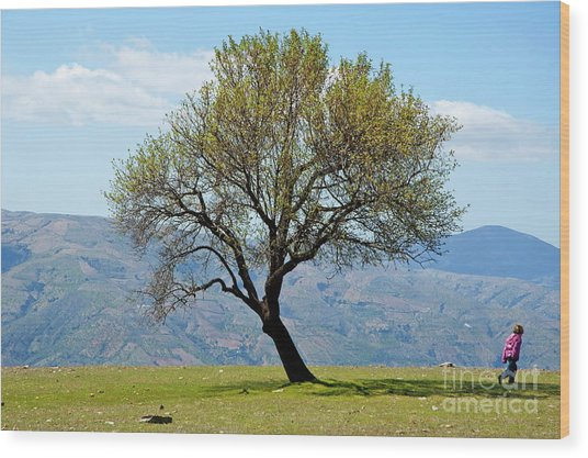 Little Girl Walking Past A Tree In Springtime Wood Print by Sami Sarkis