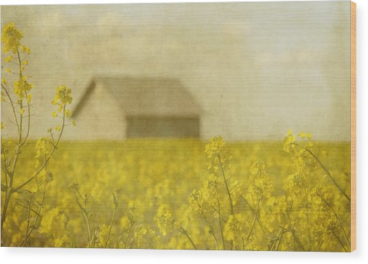 Little House On The Prairie Wood Print