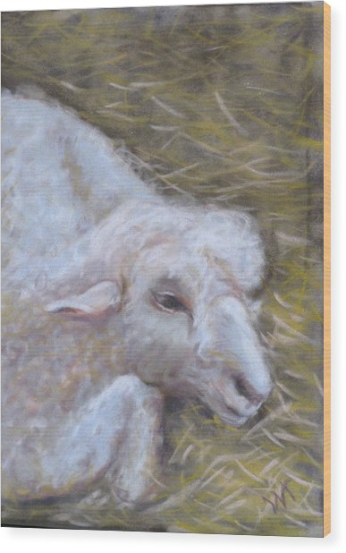 Little Lamb Wood Print by Wendie Thompson